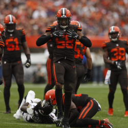 Hawks in the NFL – Week 5